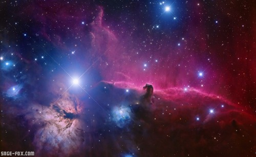 horsehead-nebula-best-wallpaper-photos.jpg