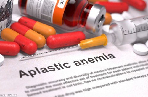AplasticAnemia_284140784.jpg