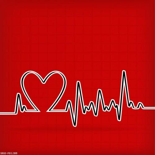 CardiogramonRed_9767015_original.jpg