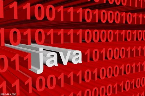 binarycodeJava_289152893.jpg