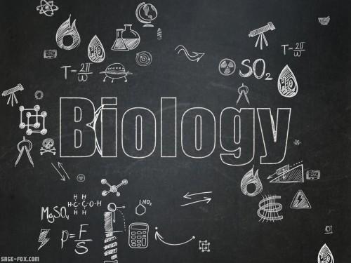 Biology_323575595.jpg