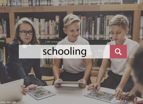 Schooling_432711433.jpg