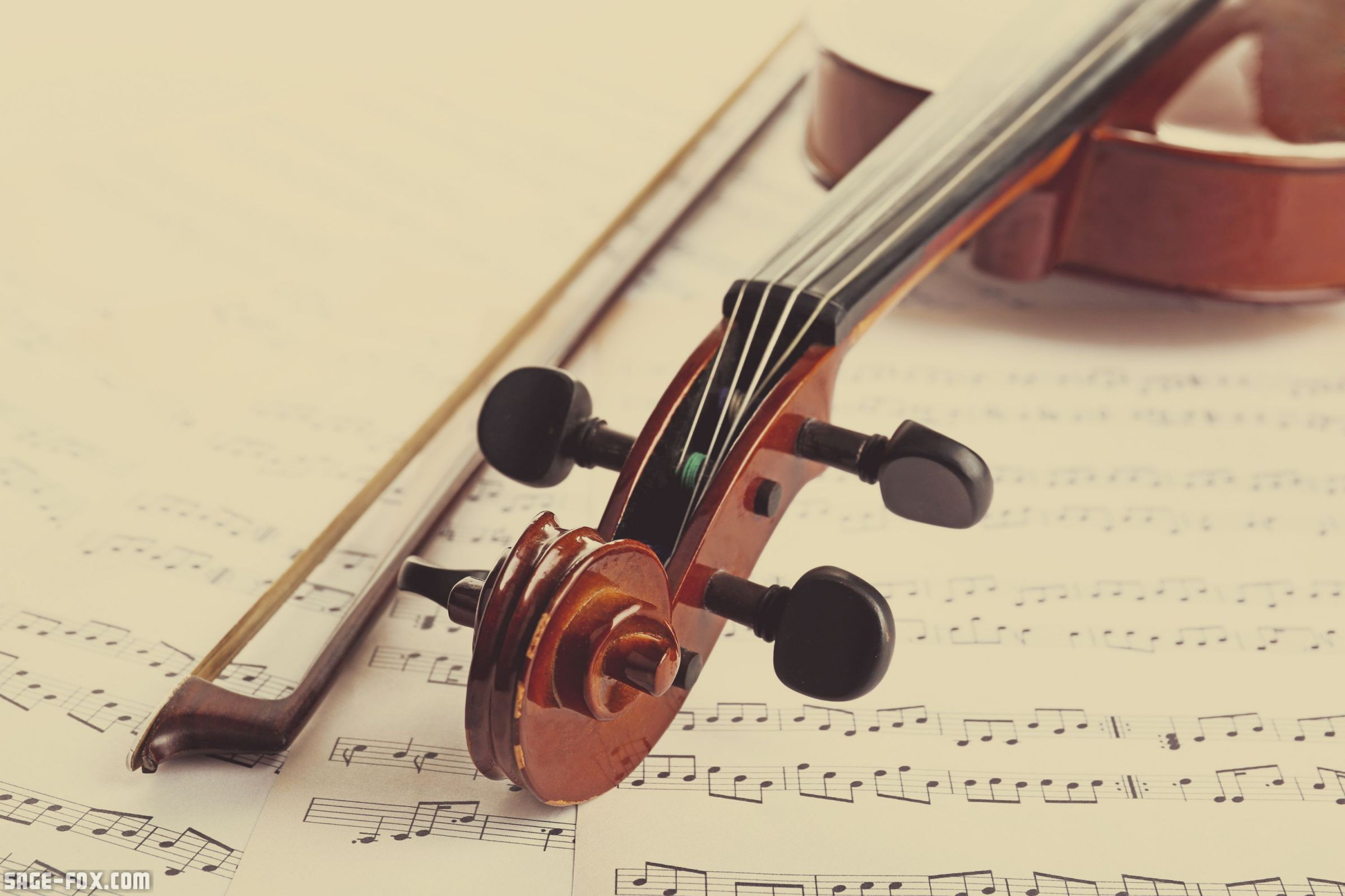 Classical violin on musical notes background 397172275 ...