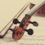 Classicalviolinonmusicalnotesbackground_397172275
