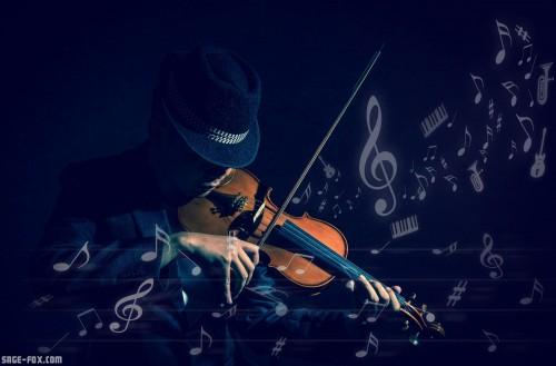 Violinplayer_429416122.jpg